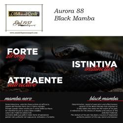 Visconti Mirage Horn- penna stilografica/penna roller